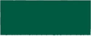 National_Academy_of_Inventors_logo copy
